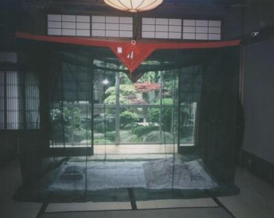 Midori1