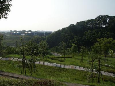 Inagi_sakahama_05a5085v1
